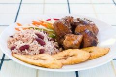 Galinha Stewed com arroz Foto de Stock Royalty Free