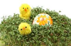 Galinhas da Páscoa e ovo pintado no agrião verde fresco Foto de Stock
