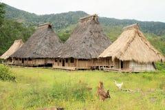 Galinhas por casas tradicionais no museu ao ar livre em Wologai imagem de stock royalty free