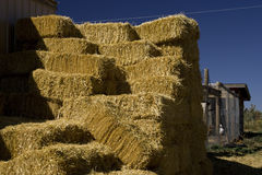Galisteo Hay Bales Stock Photos