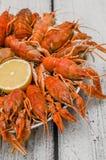 Galjanoplastia hervida de los cangrejos imagenes de archivo