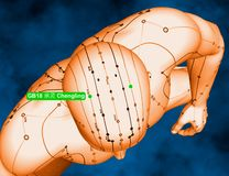 Acupuncture Point GB18 Chengling, 3D Illustration, Blue Backgrou royalty free stock photography