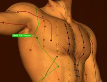 Acupuncture Point GB22 Yuanye, 3D Illustration, Brown Background stock photography