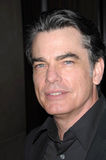 "Peter Gallagher. At the 18th Annual ""A Night at Sardi's"" benefitting the Alzheimer's Association, Beverly Hilton, Beverly Hills, CA. 03-18-10 Royalty Free Stock Images"