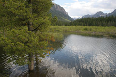 Gallantin flod i Bozeman, Montana USA Arkivbild