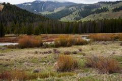 Gallatin River Valley no parque nacional de Yellowstone Fotos de Stock Royalty Free