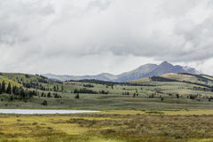 Gallatinbergskedja, Yellowstone nationalpark royaltyfri foto