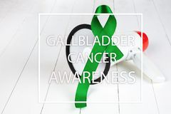 Gallbladder and Bile Duct Cancer awareness month in February royalty free stock photo