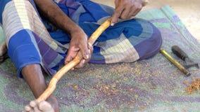 Galle, Sri Lanka - 2019-04-01 - canela - close up do ramo da canela das cascas do homem vídeos de arquivo
