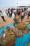 Galle, Sri Lanka - 19 de octubre de 2013: Los pescadores se están volviendo de la pesca Imágenes de archivo libres de regalías