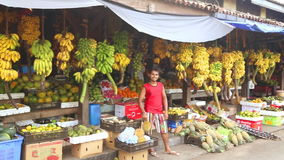 GALLE, SRI LANKA - MARCH 2014: Local fruit store with worker standing in front of hanging bananas and other exotic fruit. Tropical stock video footage