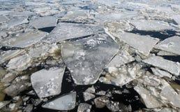 Galleggiamento del ghiaccio Fotografia Stock