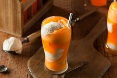 Galleggiante del gelato di Creamsicle della soda arancio Fotografia Stock Libera da Diritti