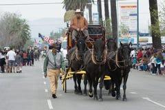 Galleggiante del trasporto del cavallo Immagine Stock