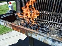 Galler med kol på brand arkivbild