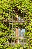 Gallerförsett fönster Royaltyfria Bilder