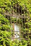 Gallerförsett fönster Arkivfoto