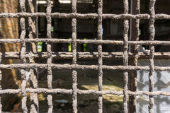 Gallerförsett fönster - closeup Arkivbild