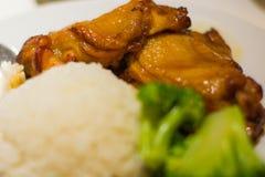 Gallerhöna med ris Fotografering för Bildbyråer