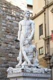 Galleri av statyer i Palazzo Vecchio Royaltyfria Bilder