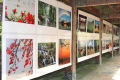 Galleria di arte con i materiali illustrativi cinesi a Zhaoqing, Cina immagini stock libere da diritti