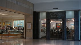 Gallerian på korta kullar i nytt - ärmlös tröja Arkivfoton
