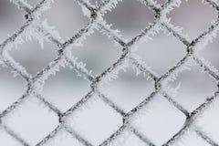 Gallerstaket som täckas med rimfrostmakro Modellnärbild royaltyfri bild