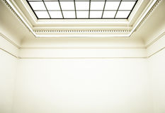 Gallery. Wall and ceiling at a  in paris/france - nice background Royalty Free Stock Photography