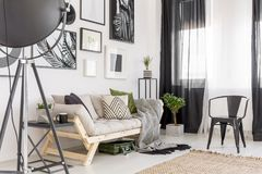 Gallery in cozy living room. Gallery of posters above settee next to plant and black chair in cozy living room interior Royalty Free Stock Photography