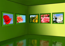 Gallery Of Flowers. Stock Photo