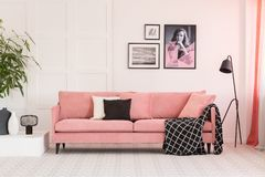 Free Gallery Of Posters On Wall In Fashionable Living Room Interior With Pink Couch And Industrial Lamp Royalty Free Stock Photography - 146015737