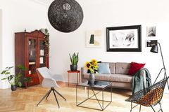 Gallery of pictures on a white wall above a cozy couch with colorful pillows in a stylish living room interior with herringbone pa royalty free stock image