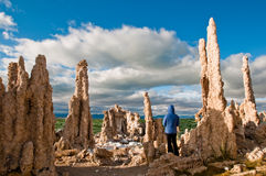 In the Gallery of Tufa Statues. Mono Lake Tufa formations tower over a person Stock Image