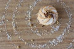 Galleta con el azúcar Fotos de archivo libres de regalías