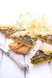 Galleta con queso e hierbas Fotografía de archivo libre de regalías