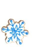 Galleta - copo de nieve Fotografía de archivo libre de regalías