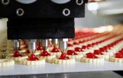 Galleta de la producción en fábrica fotos de archivo