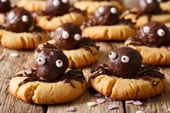 Galleta de torta dulce de Halloween con el primer de las arañas del chocolate Hor imagen de archivo