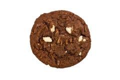 Galleta de viruta de chocolate foto de archivo libre de regalías