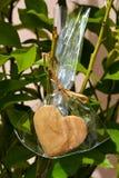 Galleta del corazón que crece en un árbol Imagenes de archivo