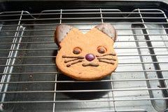 Galleta del gato del pan del jengibre Fotos de archivo libres de regalías