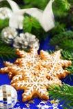 Galleta del pan de jengibre de la Navidad Fotos de archivo