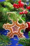 Galleta del pan de jengibre de la Navidad Fotos de archivo libres de regalías
