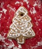 Galleta del pan de jengibre de la Navidad Imágenes de archivo libres de regalías
