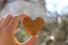 Galleta en forma de corazón Imágenes de archivo libres de regalías