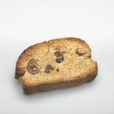 galleta hecha en casa con las avellanas en un fondo blanco Foto de archivo libre de regalías