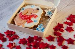 Galleta hecha en casa del pan de jengibre de la Navidad con la imagen del perro agradable, estrella, árbol de pino que pone en ca Fotografía de archivo libre de regalías