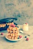 Galletas belgas hechas en casa con las frutas, los arándanos, las frambuesas y el yogur del bosque fotografía de archivo libre de regalías