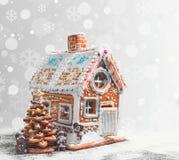 Galletas clasificadas del pan de jengibre de la Navidad Imagen de archivo