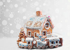 Galletas clasificadas del pan de jengibre de la Navidad Fotos de archivo libres de regalías